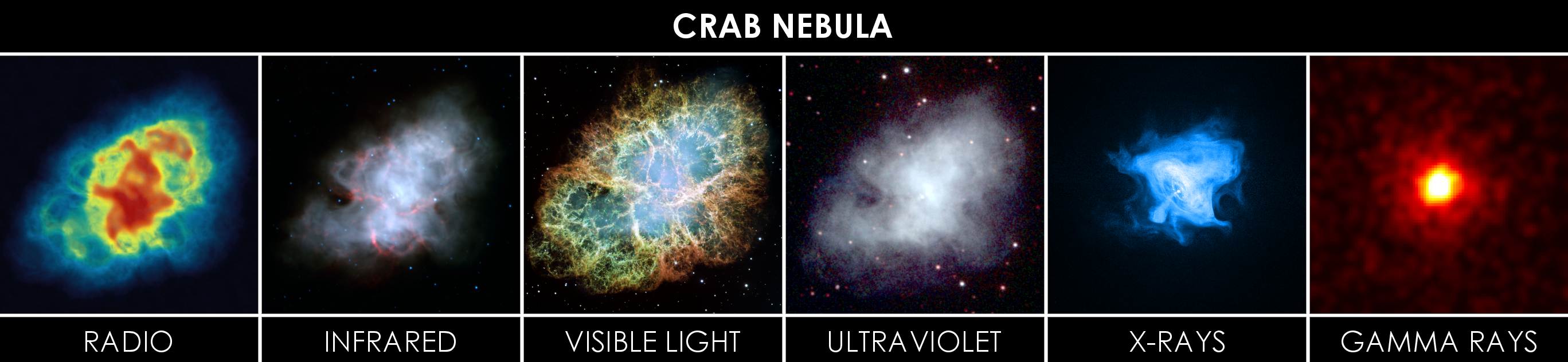Crab_Nebula_in_Multiple_Wavelengths