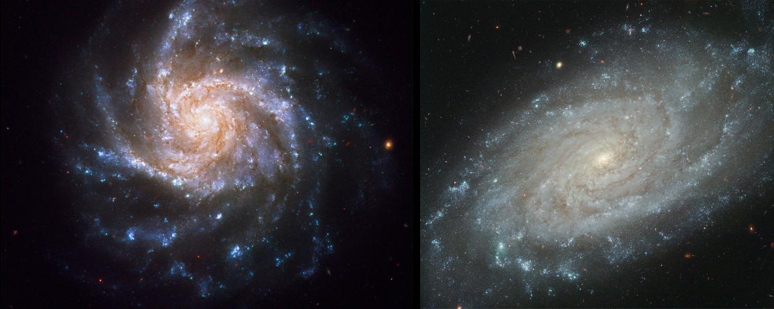 NGC1376-NGC3370-HST-m
