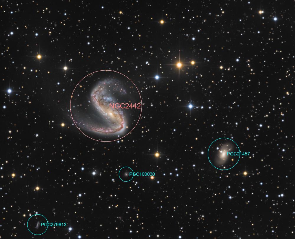 NGC2442-LRGB-20180115-T30-300s-TTK-label