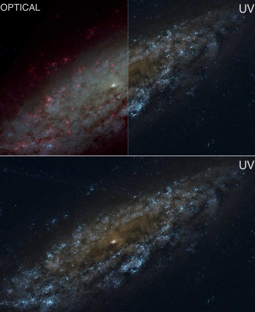 NGC6503-LEGUS-comp1cl1
