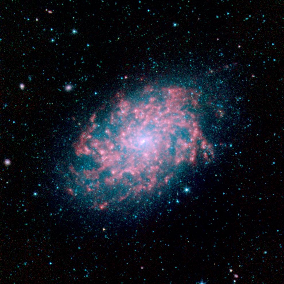NGC 7793 Spitzer