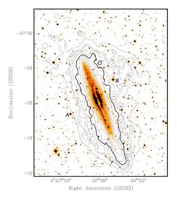 NGC891-Halo-Radio
