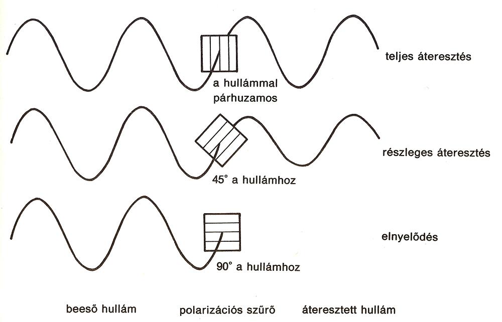 Polarizacio-rot1-cut1-s1