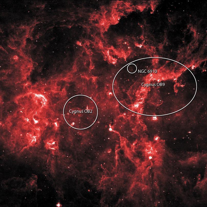 cygnusX-infra